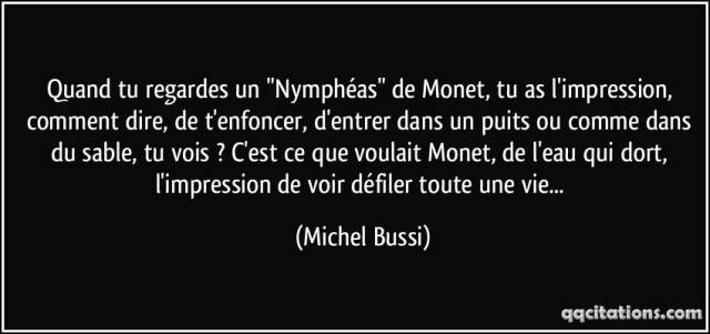quote-quand-tu-regardes-un-nympheas-de-monet-tu-as-l-impression-comment-dire-de-t-enfoncer-michel-bussi-175680