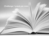 challenge-un-pave-par-mois.jpg