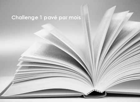 challenge-un-pave-par-mois